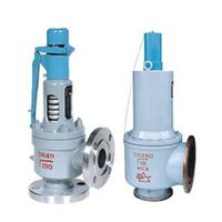 Safety & Relief Valve thumbnail image