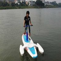 A Single Waterbird Water Bike