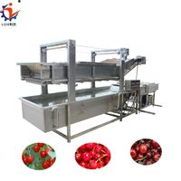 Automatic Vegetable Fruit Air Bubble Washing Machine