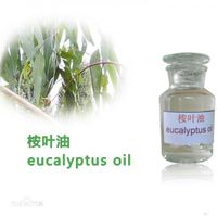 Natural Essential of Eucalyptus Oil thumbnail image