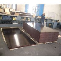 China factory direct sale price brown film faced plywood
