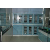 Lab reagent cabinet,lab storage cabinet,lab furniture