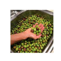 Fresh Olives thumbnail image