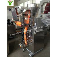 DXDY-100H Full-Automatic Liquid Packing Machine