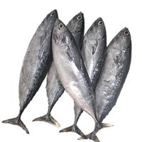 Frozen fish products thumbnail image