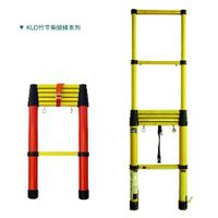 fiber glass telescopic ladder thumbnail image