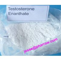 Testosterone Enanthate White Powder Test E