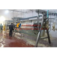 poultry slaughtering machine/ A plucking machine