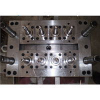 Huangyan plastic pet bottle tube preform mould