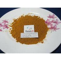 Turmeric Powder / Turmeric finger / Slices turmeric / fresh turmeric