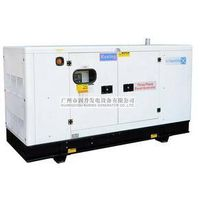 Diesel Generator PK30160 with Marathon Alternator