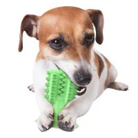 Dog Chew Toothbrush Dog Teeth Cleaning Toy Natural Dental Care Cleaning Stick With Suction Cup thumbnail image