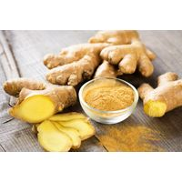 Ginger - fresh and Processed for sale