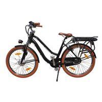 Joydeer unfolding electric bicycle