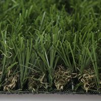 landscaping grass thumbnail image