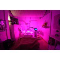 Kernel KN-7000A CE USA 510K led light therapy for salon spa Photodynamic Therapy PDT beauty Machine thumbnail image