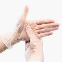 Non-medical Vinyl Gloves