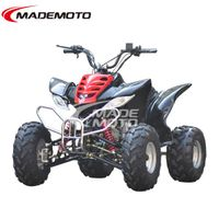 110CC Air Cooled ATV Quad (AT1101)