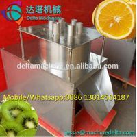 vegetable and fruit slicer