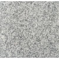 Granite Slabs/Tiles (G1903)