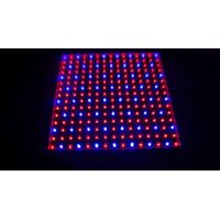 Newest hydroponics lighting 15W 225PCS chips SMD red and blue light LED Grow light for flowering