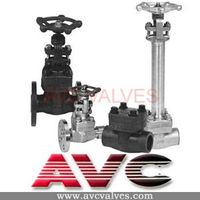 AVC Forged Steel Valve