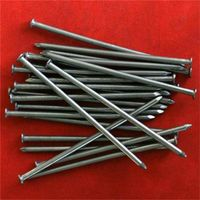 common nails / wire nails / steel nails
