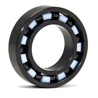 full ceramic and hybrid ball bearing 629