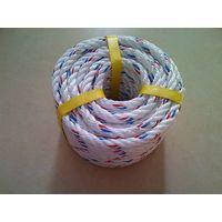 Hot sale PP Danline Rope