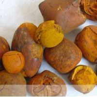 Cow/Ox/Cattle Gallstones 80/20