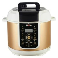 Golden Electric Pressure Cookers with Multi Function 5L (ZH-A509G)