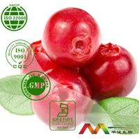 100% Natural Good Cranberry Extract Powder