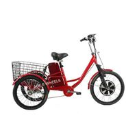 350W Electric Tricycle for Cargo with Big Basket (TC-017) thumbnail image