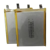 Polymer/aluminum Li-ion batteries, safer and better, with pretty competitive price