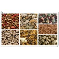 Pet Food Processing Equipment thumbnail image