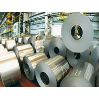 Galvanized Steel Plate&Coil