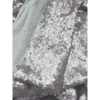 Silver Sequine Fabric