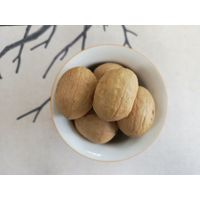 common new crop Xinjiang dried inshell walnuts 32mm jumbo unsifed and washed