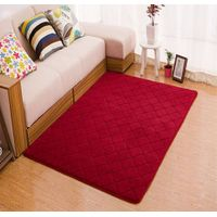 Simple coral velvet carpet