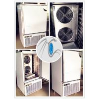 Small Quick Freezer with Energy-Efficient Italy Embraco Compressor