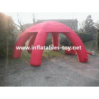 Good quality new arrival inflatable dome tent spider tent