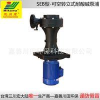 Vertical pump SEB5022/5032/6552/7572/75102/100/152 FRPP