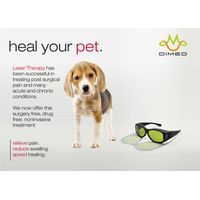 Dimed Laser Therapy for veterinary - many applications for many conditions