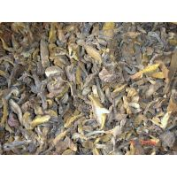 dried suillus