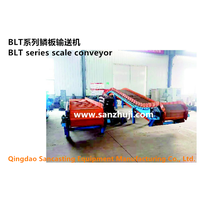 BLT series scale conveyor thumbnail image