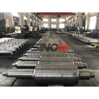 Various Mill Roll/Roller for rolling mill
