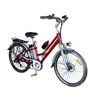 250W Lithium Battery City Electric Bike (TDE-038B) thumbnail image