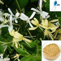 HoneySuchle Flowers Extract