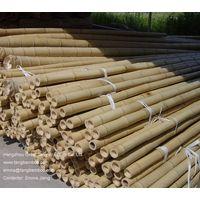 bamboo poles 4 thumbnail image