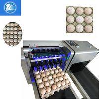 New type egg inkjet printer
